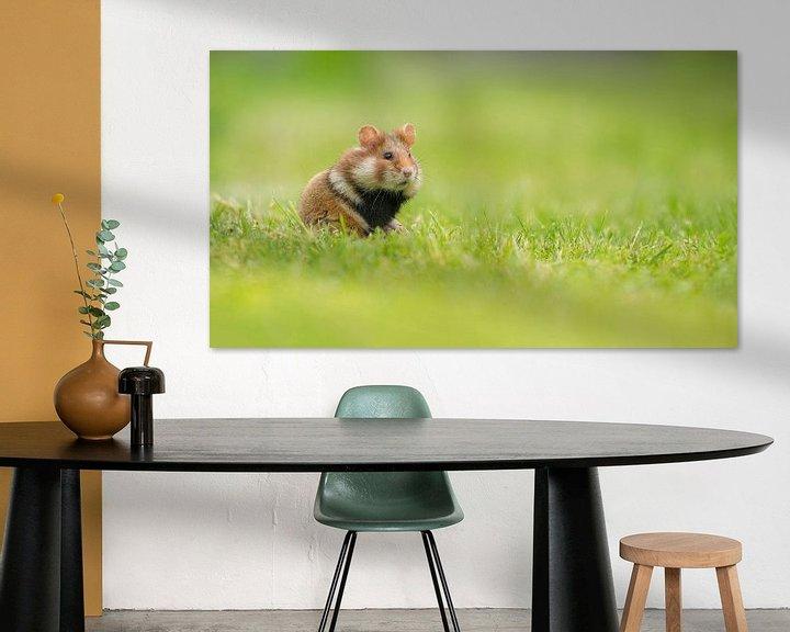 Beispiel: Hamster im Gras von Elles Rijsdijk