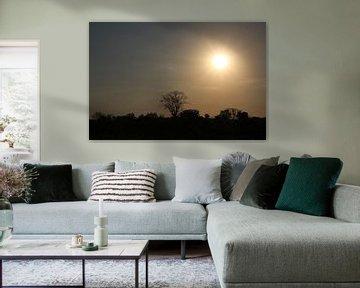 Silhouette zon van Marije Zwart