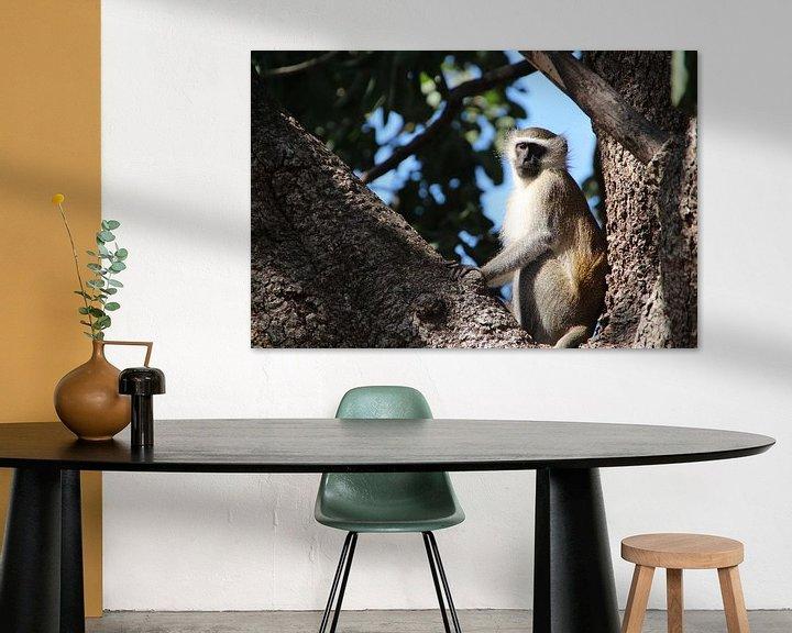 Beispiel: Den Affen vom Baum aus beobachten von Marije Zwart