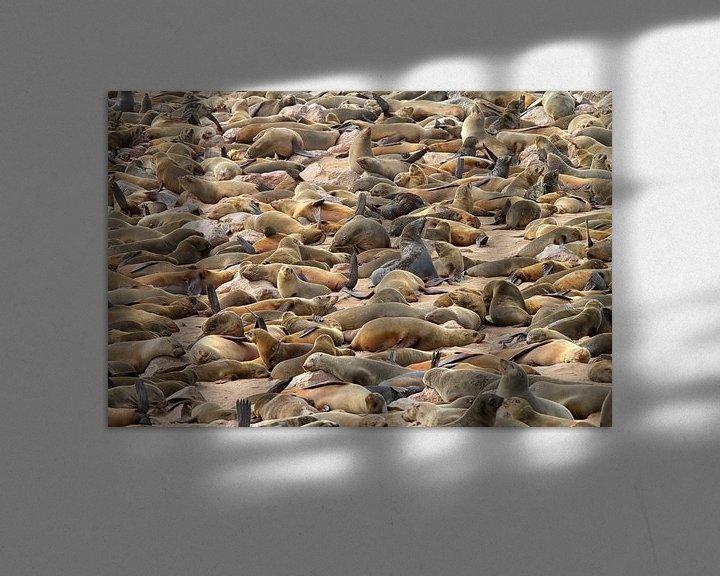 Beispiel: Robbenkolonie von Angelika Stern
