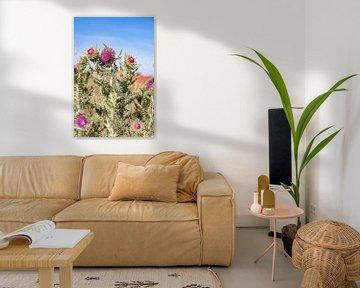 Vlieland-Flora von Sophie Bik Fotografie