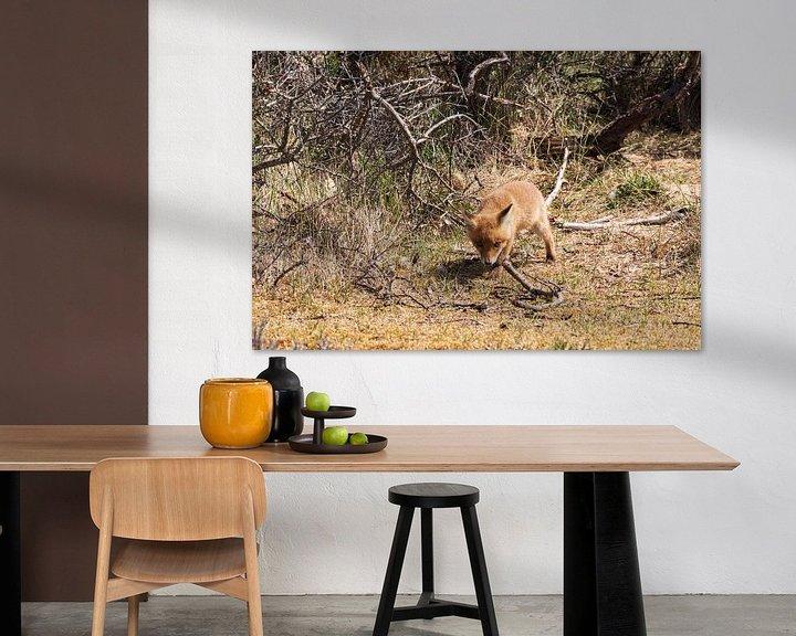 Beispiel: Junger Fuchs entdeckt die Welt von Merijn Loch