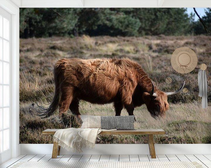 Sfeerimpressie behang: Schotse Hooglander Heide van Sylvia van der Hoek