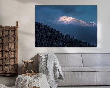 Roze ochtend licht schijnt op bergtoppen in het Zillertal arena in Oostenrijk van Hidde Hageman
