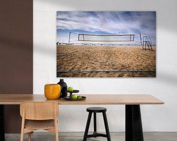 Volleybal van Graham Forrester