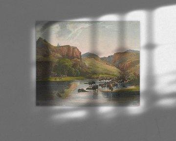 Karl Bodmer~Herden der Bisons und Elche am oberen Missouri.