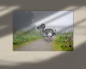 Dodo auf dem Winterdijk von Peter Hermus