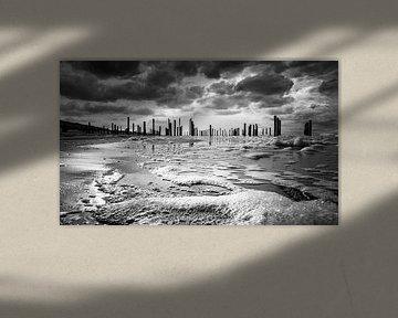 Palendorp  in black and white van Peter van der Waard