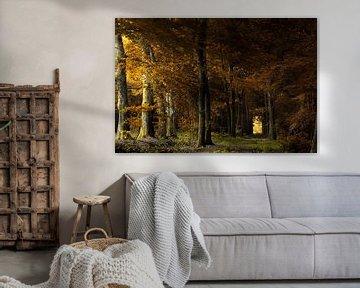 In Dark Trees van Kees van Dongen