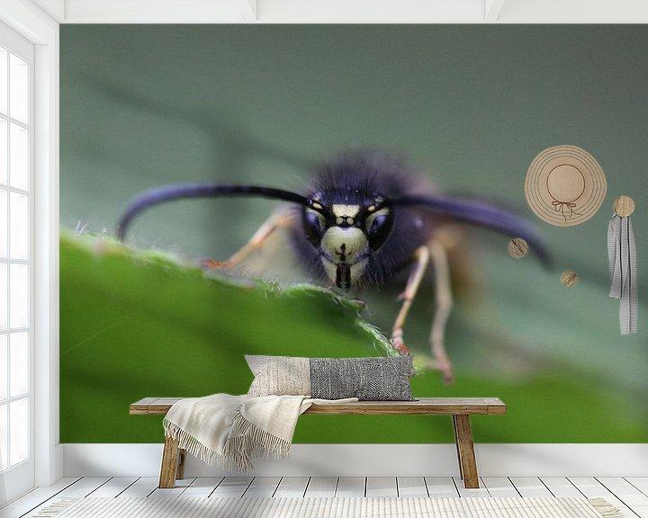 Beispiel fototapete: Nahaufnahme/Makroaufnahme einer Wespe von Bärbel Severens