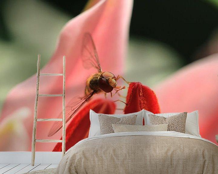 Beispiel fototapete: Wespe auf einer Lilie von Bärbel Severens