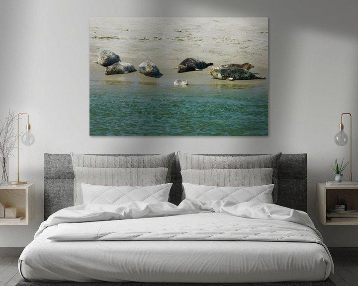 Sfeerimpressie: Waddenzee Zeehonden. van Brian Morgan