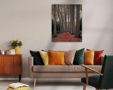 Santiago Rusiñol-Allee oder Planetenbäume