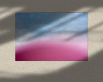 Abstracties ::rose van Peter Hermus