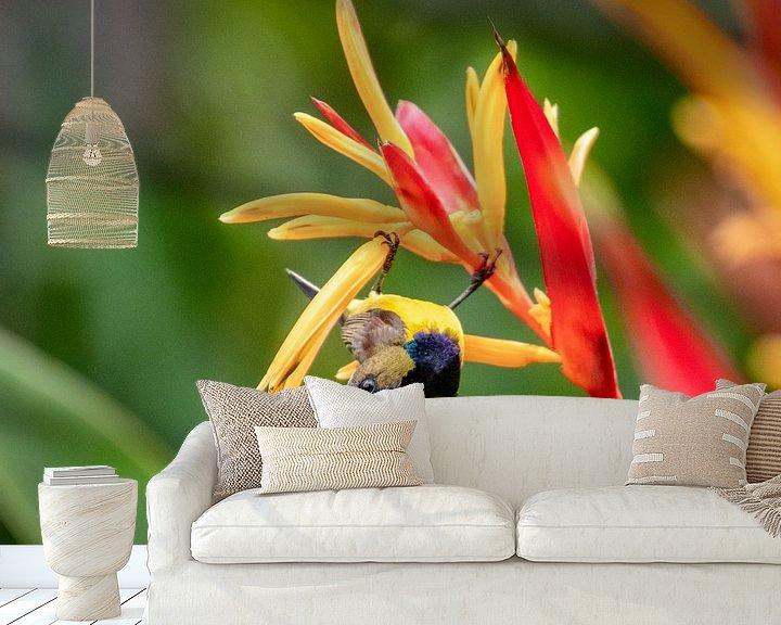 Sfeerimpressie behang: De Aziatische Kolibri heet een Honingzuiger van Marlies Gerritsen