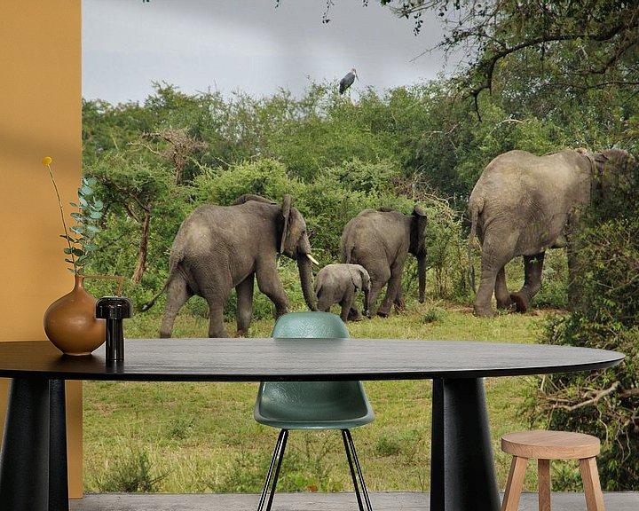 Beispiel fototapete: Elefantenfamilie von Marije Zwart
