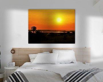 Afrikanische Sonne von Marije Zwart