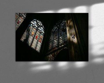 Glasmalerei IV von Steven Goovaerts