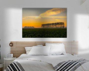 Sunrise Noordoostpolder