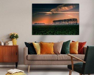 Sonnenaufgang Noordoostpolder von Martien Hoogebeen Fotografie