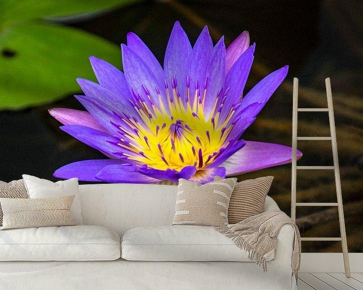Sfeerimpressie behang: Blauwe Lotus in bloei van Marlies Gerritsen