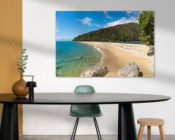Tropischer Strand von Ivo de Rooij