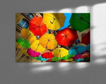 Farbige Regenschirme von Ivo de Rooij