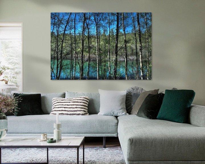 Beispiel: Natur: Bäume an einem See von Jarno De Smedt