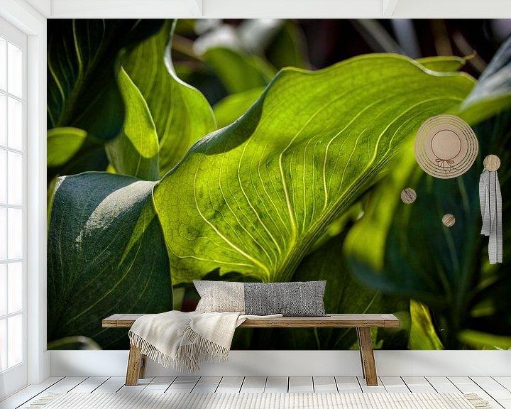 Sfeerimpressie behang: Blad van Rob Boon