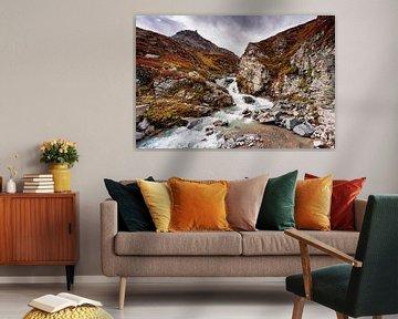 Bergbeek Silvretta van Rob Boon