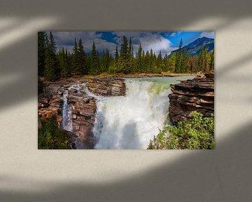 Athabasca waterval in Jasper N.P, Alberta, Canada