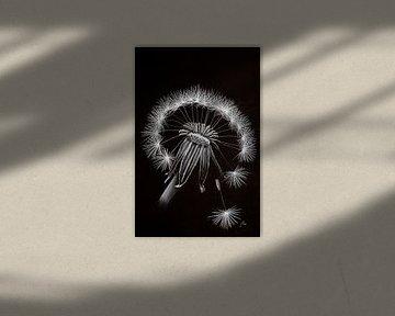 Löwenzahn von Ton van Buuren