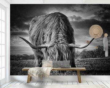 Highlander / Hooglander zwart/wit van Wim van Beelen