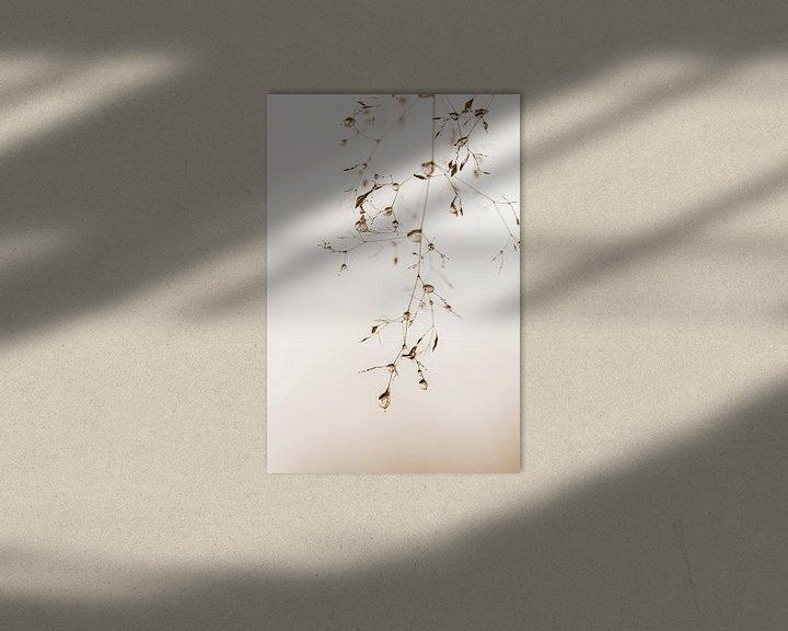 Sfeerimpressie: Bevroren druppels op grasjes van Teuni's Dreams of Reality