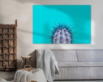 Cactus turquoise van Elles Rijsdijk