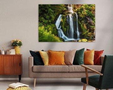 Triberg Waterval in het zwarte woud