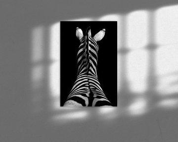 Zebra von peter reinders