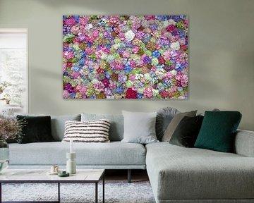 Hortensia display van Paul Heijmink