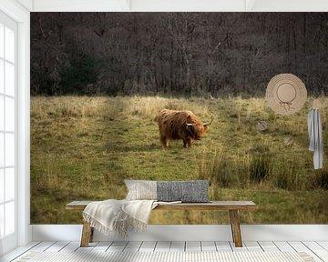 Schotse hooglander, Ben Nevis, Schotland van Bob Slagter