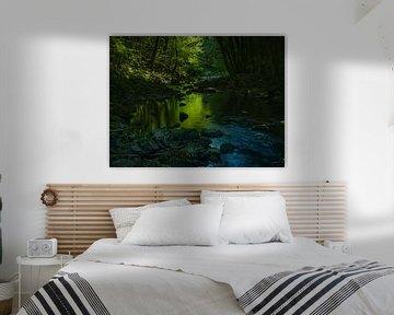 Smaragdgroen bos van Marco Matznohr