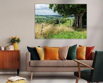 Paysage typique du Limbourg méridional près d'Epen sur John Kreukniet