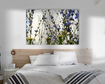 Wildblumen bewegen sich im Wind von Helene van Rijn