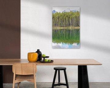 Image miroir du lac canadien sur Map of Joy