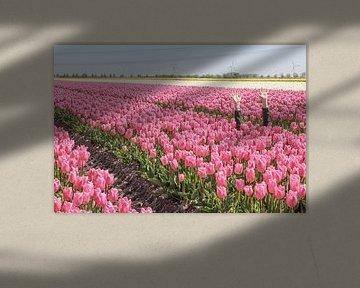 Unter den Tulpen begraben von Map of Joy