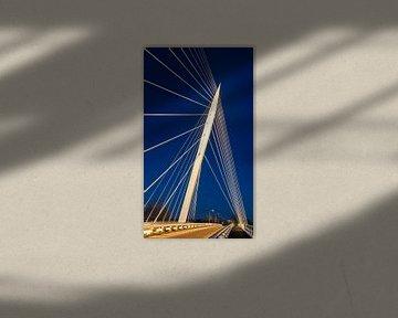 Harfenbrücke von Calatrava, die Niederlande von Adelheid Smitt