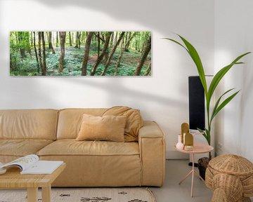Wildnis Wald von Tobias Luxberg