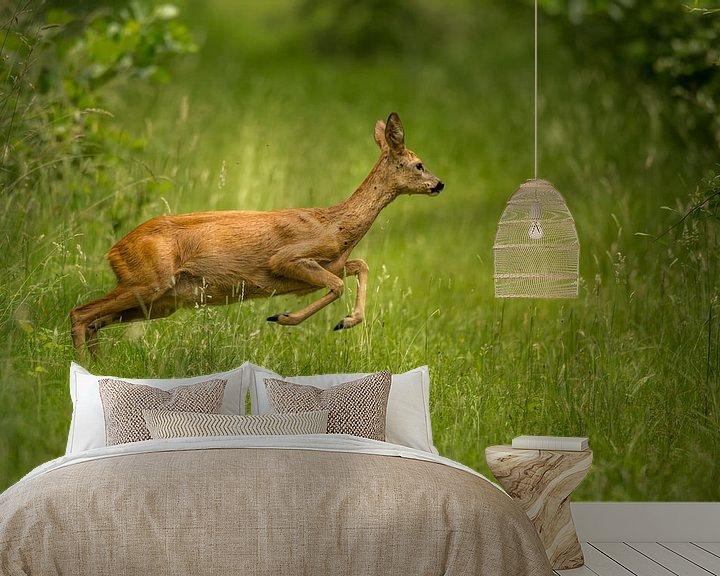 Beispiel fototapete: Springender Hirsch im Gras. von Erik de Rijk