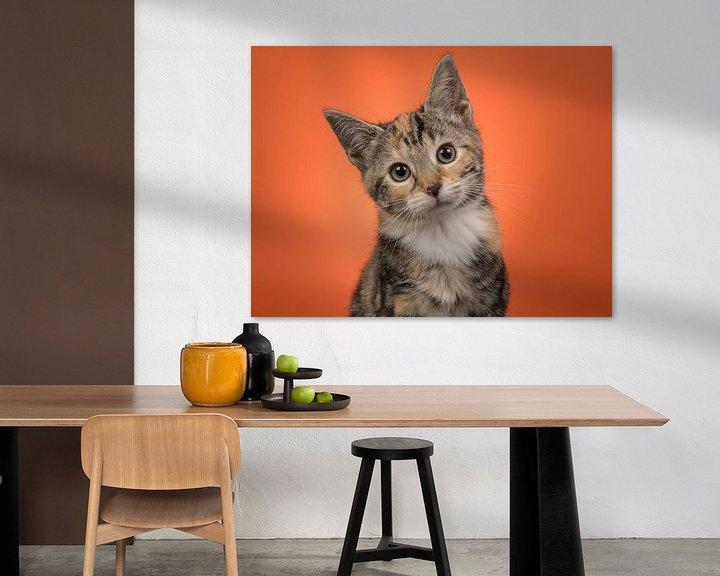 Beispiel: Kätzchen-Portrait in Orange von Elles Rijsdijk