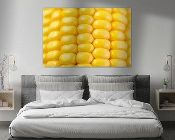 Maïs jaune frais en épi. sur Sjoerd van der Wal