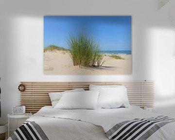 Helmgras in de duinen aan de Noordzeekust van Sjoerd van der Wal
